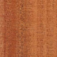 Mahogany Veneer Gate Panel
